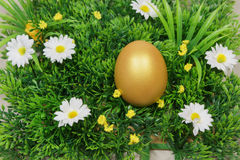 Egg on a green artificial grass. With white flowers royalty free stock image