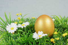 Egg on a green artificial grass. With white flowers royalty free stock photography