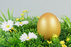 Egg on a green artificial grass. With white flowers stock photo