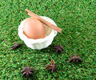 Egg on green grass. Background royalty free stock photos