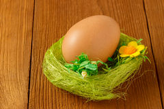 Egg the green nest Royalty Free Stock Photography