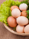 Egg with greens Royalty Free Stock Photo