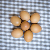 Egg group on cloth plaid Stock Photo