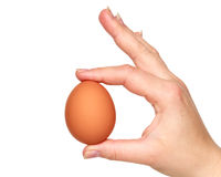 Egg with hand Royalty Free Stock Images