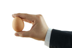 Egg in hand Stock Images