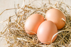 Egg in hay nest Stock Photos