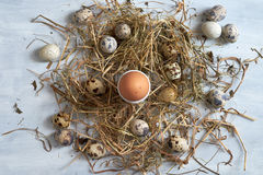Egg in hay nest on old wooden table background. Top view Royalty Free Stock Image