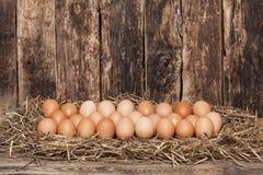 Egg in hay Stock Image