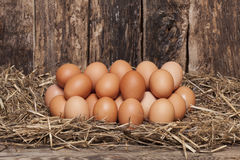 Egg in hay Royalty Free Stock Photography