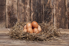 Egg in hay Royalty Free Stock Image