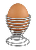 Egg in holder isolated on white Stock Photography