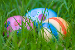 Egg Hunt Stock Photos