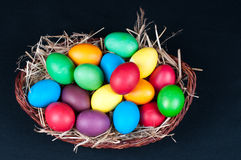 Egg hunt Stock Images