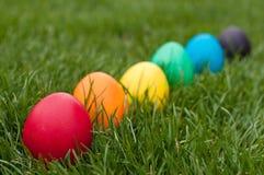 Egg hunt Stock Photos