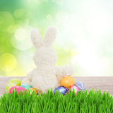 Egg hunt with easter bunny Royalty Free Stock Photos