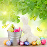 Egg hunt with easter bunny Royalty Free Stock Photography