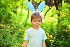 Egg hunt on spring holiday. Little boy child in green forest. love easter. Family holiday. Happy easter. Childhood. Rabbit kid with bunny ears. Hare. Easter is royalty free stock photos