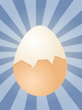 Egg illustration Stock Photography