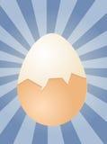 Egg illustration Stock Photography