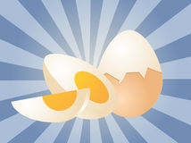 Egg illustration Stock Image