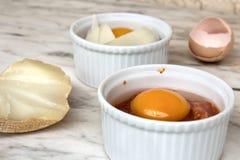 Egg In Ramekin Royalty Free Stock Photography