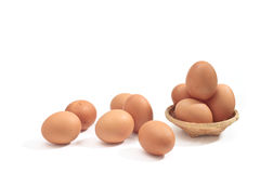 Egg. Ingredient in the cooking of all kinds Stock Images
