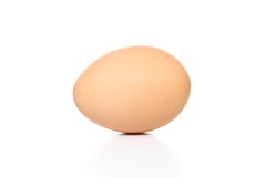 Egg in isolate background. Stock Images
