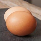 egg isolated on black background Royalty Free Stock Photo