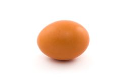 Egg Isolated On White Royalty Free Stock Photos