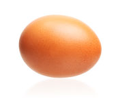Egg isolated Stock Image