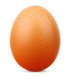 Egg isolated Royalty Free Stock Photography