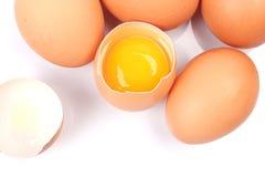 Egg Stock Photo