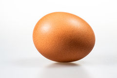 An egg isolated Stock Photos