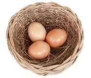 Egg isolated on white background. Egg in basket isolated on white background Stock Photos