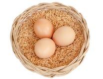 Egg isolated on white background. Egg in basket isolated on white background Royalty Free Stock Image