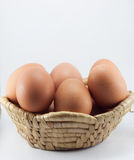 Egg isolated on white background. Chicken on basket and white background Stock Photo