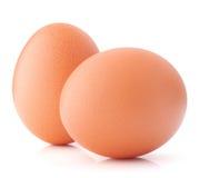 Egg isolated on white background cutout Stock Image