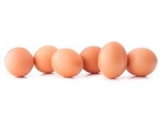 Egg isolated on white background cutout Stock Photos