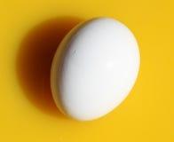 Egg in juice. White egg in orange juice, close up image Royalty Free Stock Image
