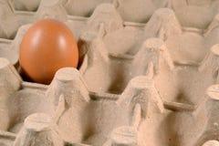 Egg el cartón con el huevo. Imagen de archivo