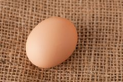 Egg laying on jute Royalty Free Stock Photos