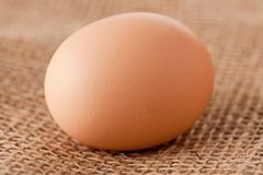 Egg laying on jute Royalty Free Stock Images