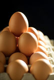 Egg line over on tray royalty free stock photography
