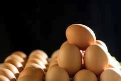 Egg line over on tray stock image