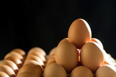 Egg line over on tray royalty free stock photos