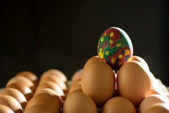 Egg line over on tray dark tone stock photography