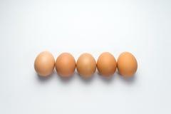 Egg line on white background. Eggs line on white background Stock Photography