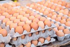 Egg los cajones de huevos marrones y blancos en un mercado local de los granjeros Fotografía de archivo