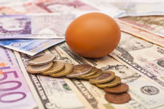 Egg lying on banknotes and coins Stock Photo