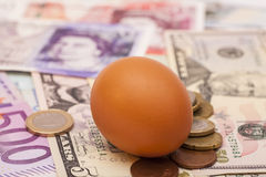 Egg lying on banknotes and coins Stock Photos